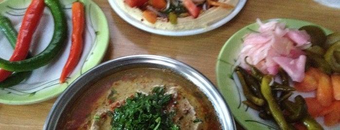 Çayırcı Bakla Humus is one of Gourmet!.