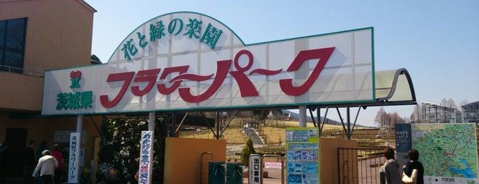 茨城県フラワーパーク is one of サイクリング.