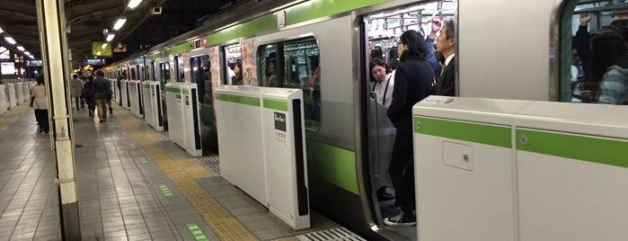 Mejiro Station is one of 山手線.