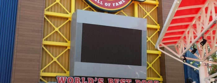 Hot Dog Hall of Fame is one of The 15 Best Places for Hot Dogs in Orlando.