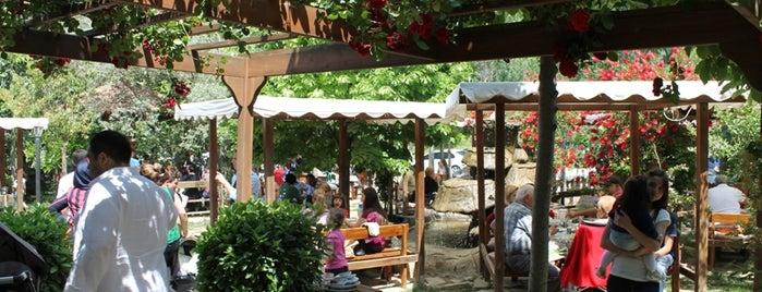 Andız Köy Sofrası is one of Kuşadası.
