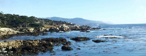 Cypress Point Lookout is one of The Great Outdoors.