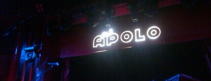 Sala Apolo is one of Barcelona Gayfriendly.