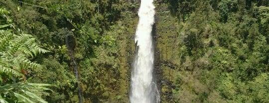Akaka Falls State Park is one of Real World Hawaii ~ Big Island.