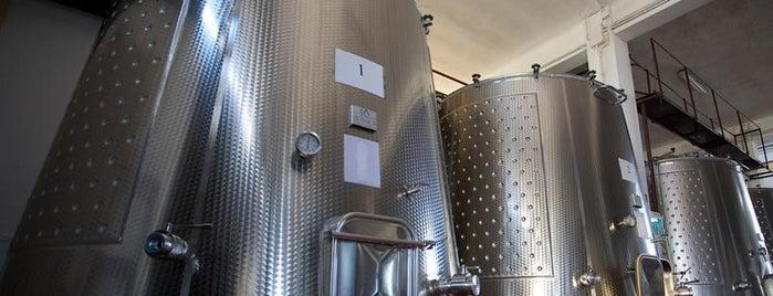 Tenuta Mater Domini is one of Cantine Aperte Puglia 2012.