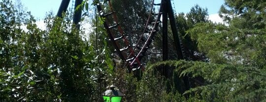 The Demon is one of ROLLER COASTERS.