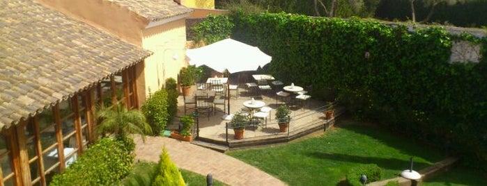 Hotel Vereda Real is one of Comer en el Aljarafe de Sevilla.