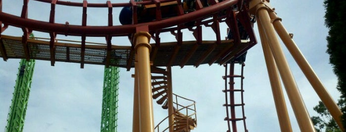 Flashback is one of ROLLER COASTERS.