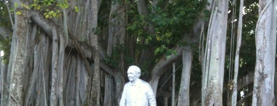 Banyan Tree is one of Fort Myers/Naples.