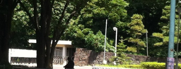 Harajuku Gate is one of 公園.