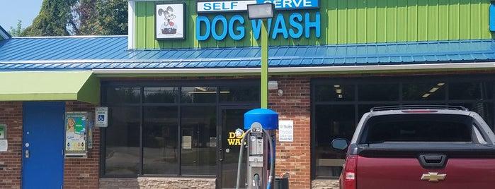 Eri dog mr suds self serve dog wash is one of eri dog solutioingenieria Images