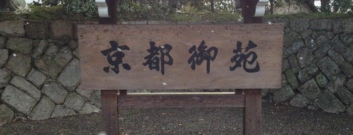 Kyoto Gyoen is one of 中世・近世の史跡.