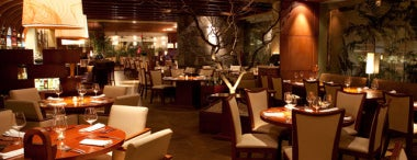 Harry's Prime Steakhouse & Raw Bar is one of Restaurantes con pantalla para ver el Mundial.