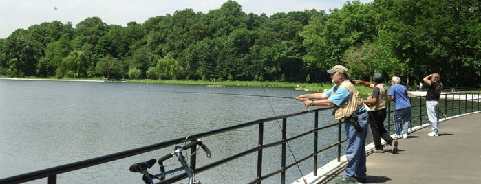 go fish best fishing spots in NYC