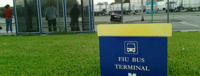 FIU Bus Terminal is one of Locations Discovered.