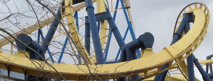 Batman: The Ride is one of ROLLER COASTERS.