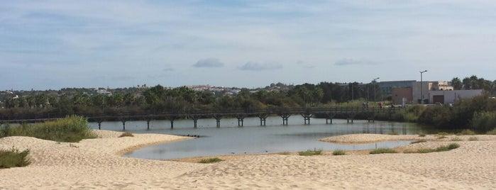 Reserva Natural dos Salgados is one of Algarve.
