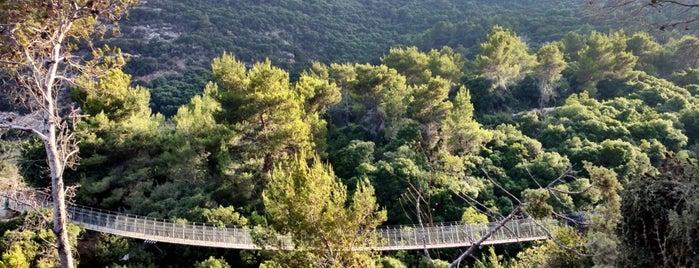 פארק קק״ל נשר is one of National parks.