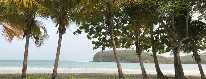La Sagesse is one of Grenada.
