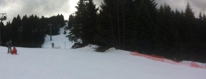 Χιονοδρομικό Κέντρο Περτουλίου is one of Skiing and Snowboarding in Greece.