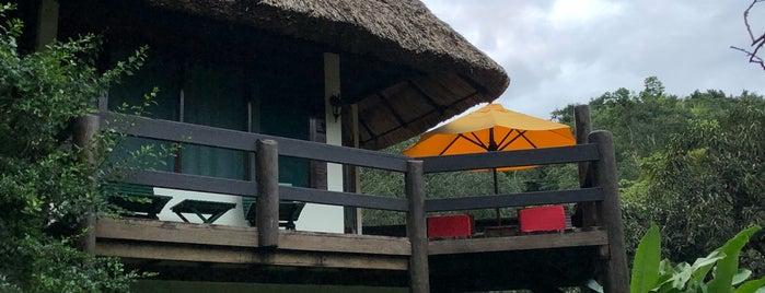 The Lodge at Chaa Creek Resort is one of Honeymoon spots.