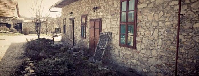 Ős Kaján is one of countryside • hungary • sleep.