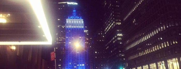 Waldorf Astoria Rooftop Garden is one of New York Favorites.