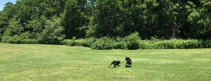 Coindre Hall Dog Park is one of Long Island.