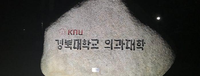 경북대학교 의학전문대학원 is one of これだけは俺のもの。.