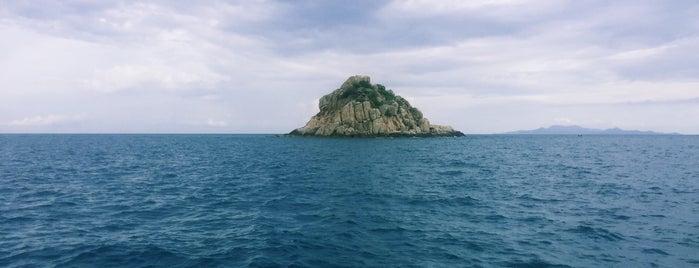 5 Best Dive Sites