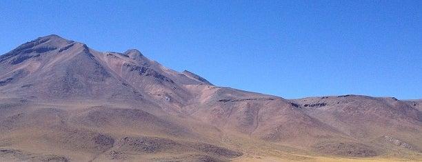 Lagunas Mixcanti y Miñiques is one of Atacama.