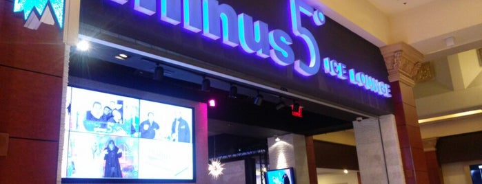 Minus5° Ice Lounge is one of Vegas to do.