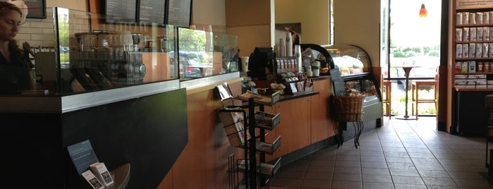 Starbucks is one of Establishments to Frequent.