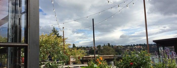 Westward is one of Seattle for Stein.