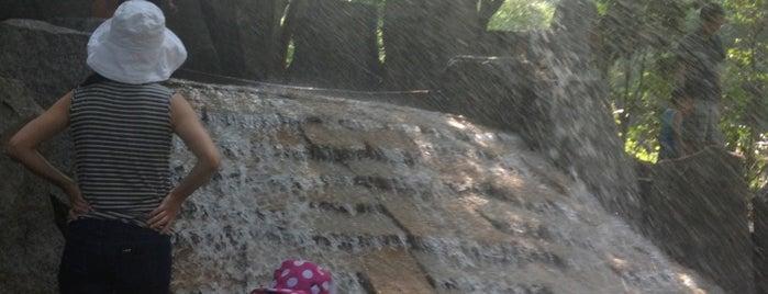 林試の森公園 ジャブジャブ池 is one of 公園.