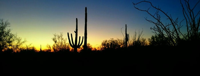 lost dutchman state park is one of PHX Parks in The Valley.