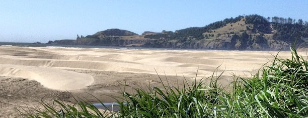 Agate Beach State Park is one of My Saved Places.