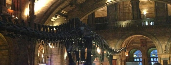 Natural History Museum Restaurant is one of london.