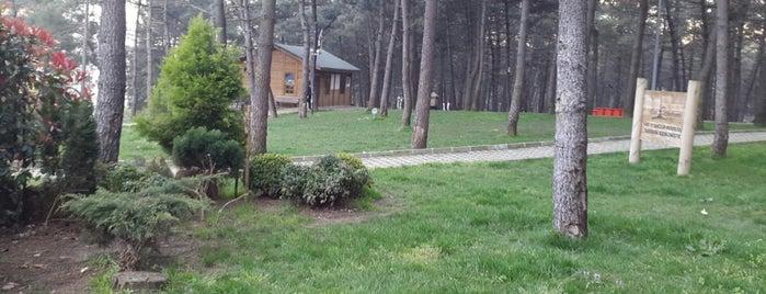 Ayazağa Yeşiltepe Mesire Alanı is one of İstanbul'daki Park, Bahçe ve Korular.