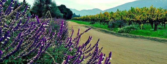 Fundo Emiliana (Bodega Organica de Vinos) is one of Santiago Chile.