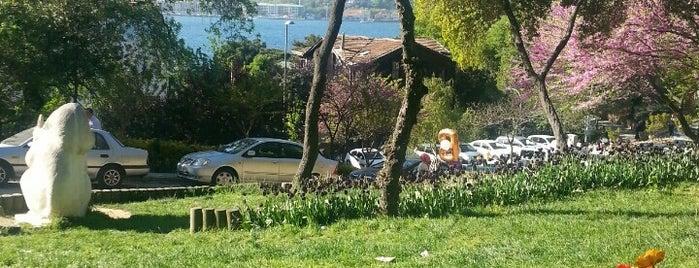 Fethipaşa Korusu is one of İstanbul.