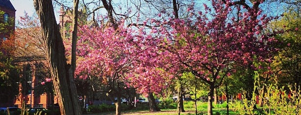 Tompkins Square Park is one of Be a Local in the East Village.