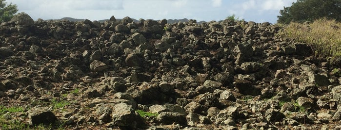 Ulupo Heiau State Historical Monument is one of Not For Tourists Hawaii.