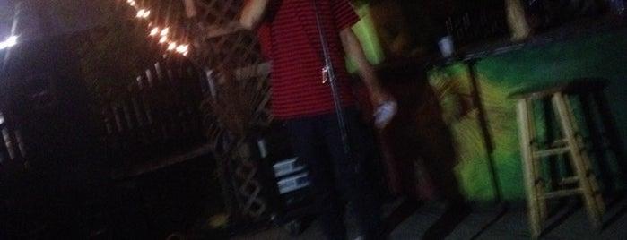 reggae bar is one of The 13 Best Places for Reggae in San Antonio.