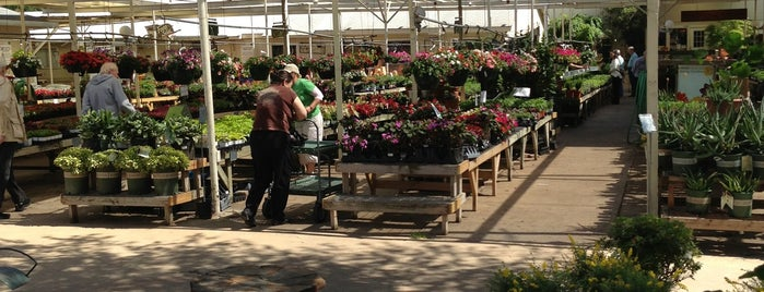 North Haven Gardens Is One Of The 15 Best Places With Gardens In Dallas.