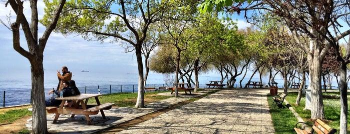 Fenerbahçe Parkı is one of İstanbul'daki Park, Bahçe ve Korular.
