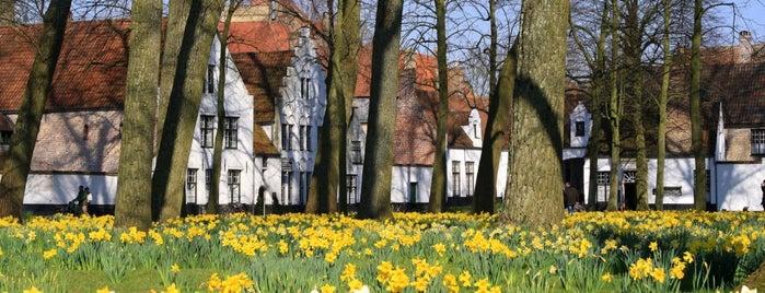 Begijnhof Ten Wijngaerde is one of Belgium / World Heritage Sites.