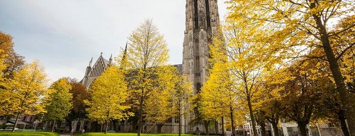Sint-Romboutskathedraal is one of Belgium / World Heritage Sites.