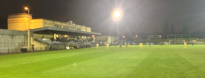 Dulwich Hamlet FC is one of Football grounds in and around London.