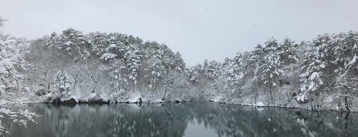 五色沼湖沼群 is one of 行った所&行きたい所&行く所.